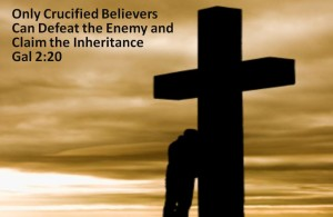 crucified with Christ sunset