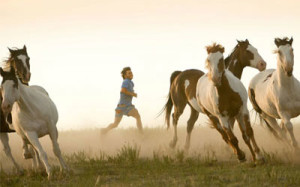 man-running-with-horses-785672