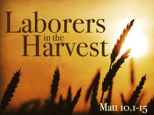 laborers-for-the-harvest