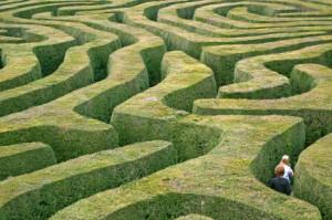 grass_maze1-300x199
