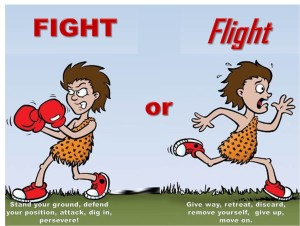 Fight Or Flight